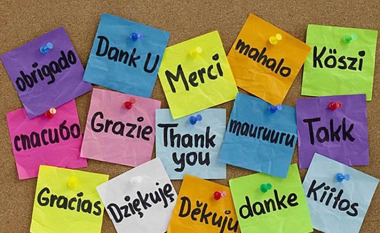 el-agradecimiento