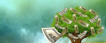 Sí, el dinero sí crece en los arboles! Este artículo le mostrara cómo puede hacer crecer su propio árbol del dinero, siguiendo estos tres pasos básicos...